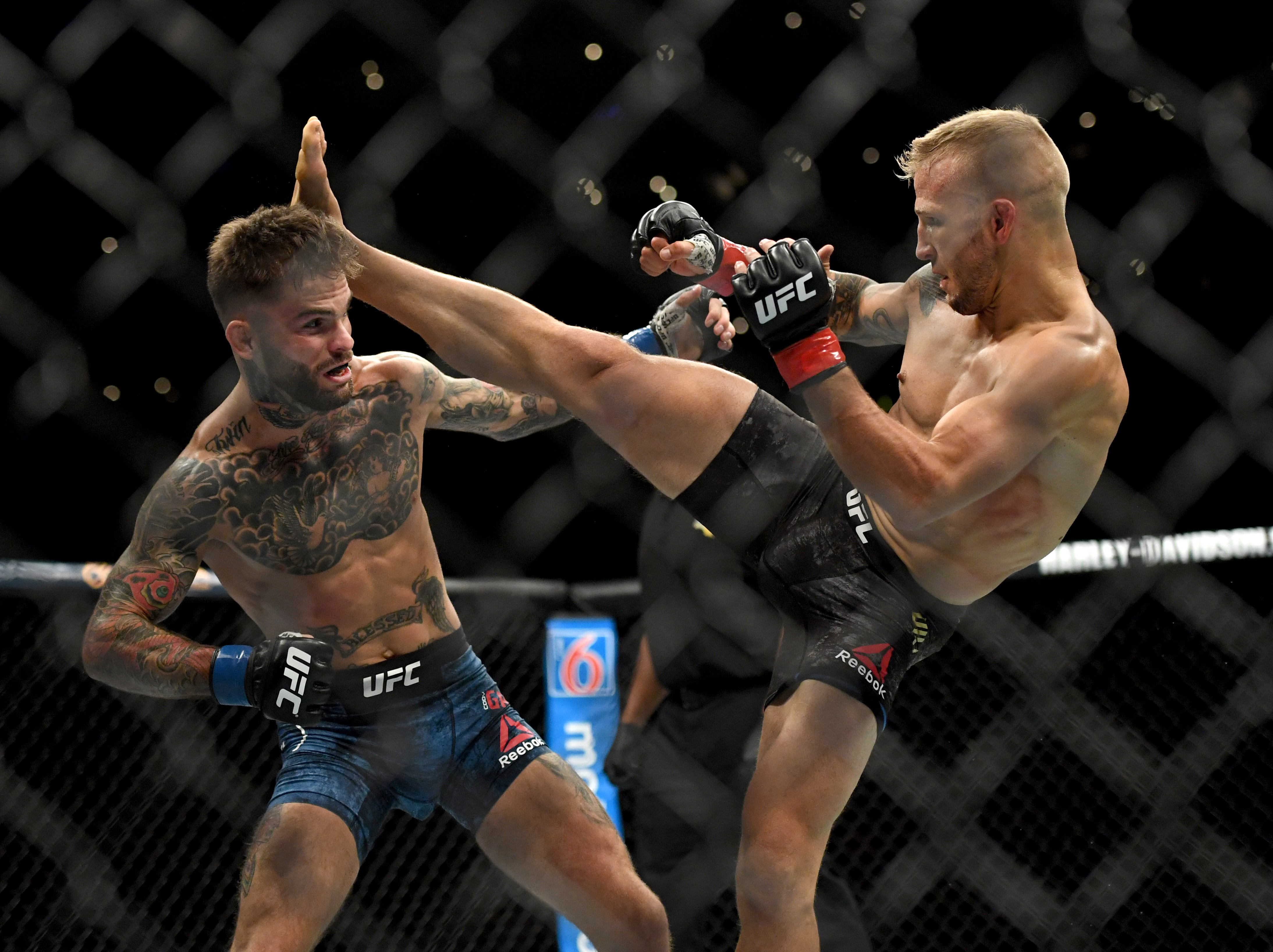UFC News: T. J. Dillashaw told how the knee surgery went and when he will return to the octagon
